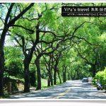 即時熱門文章:【集集綠色隧道】中部景點一日遊~集集綠色隧道