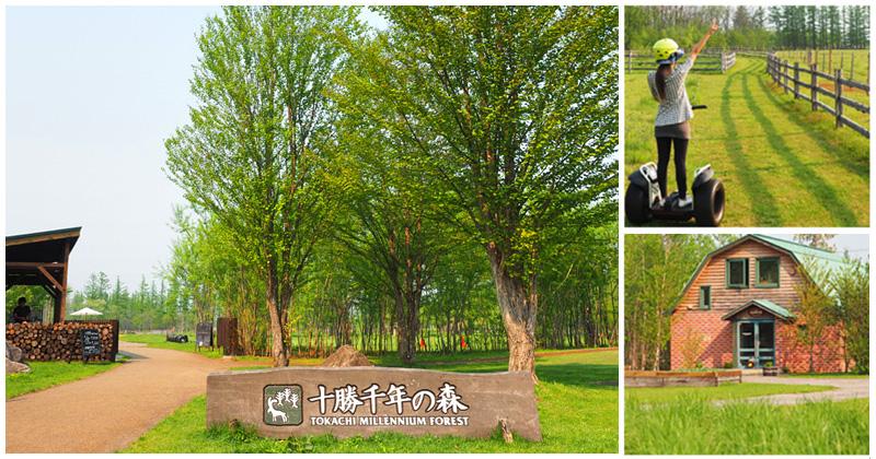 【北海道旅遊景點】十勝千年之森~夢幻的療癒系森林大草原、來去森林散散步! @Via's旅行札記-旅遊美食部落格