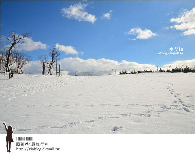 【鳥取旅行】鳥取砂丘~變身雪丘也好美!鳥取必玩的旅遊景點~ @Via's旅行札記-旅遊美食部落格