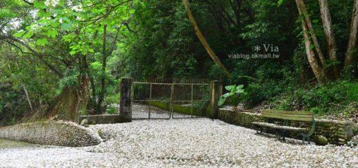 【油桐花季】挑水古道~今年依舊從此地,開啟我的桐花旅程。 @Via's旅行札記-旅遊美食部落格