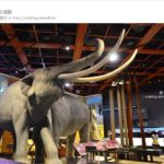 即時熱門文章:【台東景點】台東史前博物館~探訪台灣史前文化,精彩一整天!