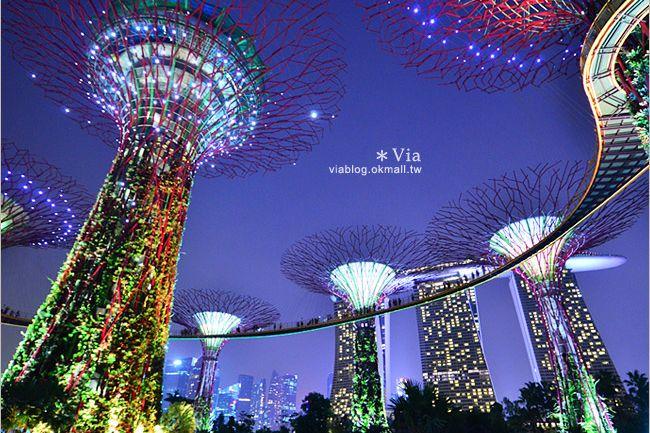 【新加坡旅遊景點】濱海灣花園Gardens by the Bay~無敵美的超級樹!大推必去! @Via's旅行札記-旅遊美食部落格