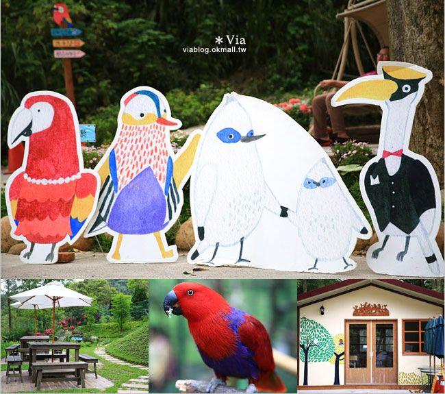 【新竹景點推薦】森林鳥花園~親子旅遊的好去處!在森林裡鳥兒與孩子們的樂園 @Via's旅行札記-旅遊美食部落格