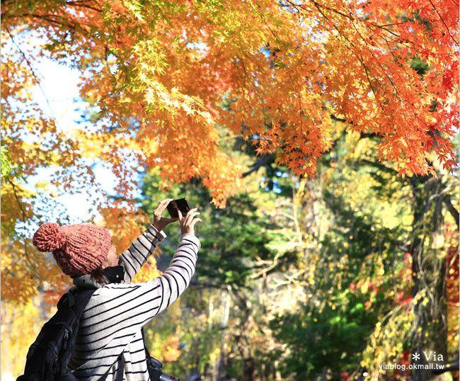【中華電信日本手機漫遊上網】出國開通手機國際漫遊服務‧隨時上網玩樂趣! @Via's旅行札記-旅遊美食部落格