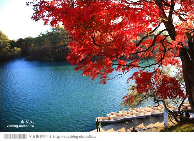 【福島景點推薦】五色沼~福島的人氣景點!搭配紅葉的夢幻湖沼之旅 @Via's旅行札記-旅遊美食部落格