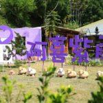 即時熱門文章:【嘉義瑞里民宿】阿喜紫藤民宿‧下午茶~主人用心照料充滿故事的歐風花園