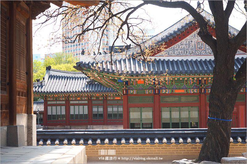 【首爾景點推薦】德壽宮~充滿歷史的韓式宮殿,一旁的德壽宮石牆路更是美不勝收! @Via's旅行札記-旅遊美食部落格