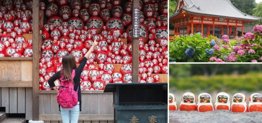 【大阪一日遊】勝尾寺~滿滿的達摩不倒翁好驚人!祈求勝運的寺廟~大阪必去的紅葉名所! @Via's旅行札記-旅遊美食部落格