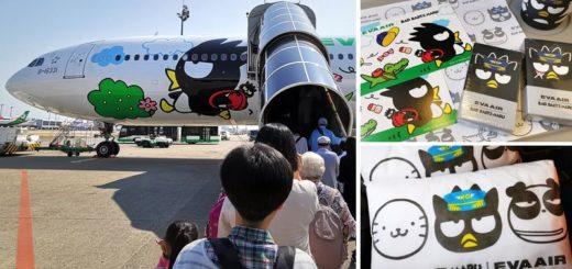 【長榮彩繪機】長榮飛福岡~BR106酷企鵝郊遊機初體驗!超多酷企鵝及好伙伴陪你搭機趣! @Via's旅行札記-旅遊美食部落格