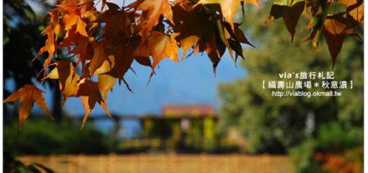 【賞楓景點】台灣的賞楓聖地~福壽山農場 @Via's旅行札記-旅遊美食部落格