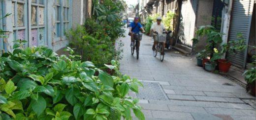 【台南神農街】一條適合慢遊、攝影、感受的老街 @Via's旅行札記-旅遊美食部落格