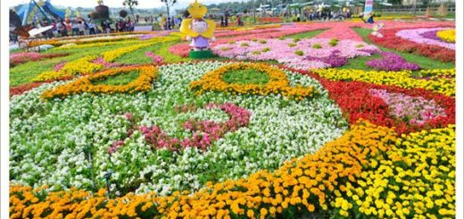 【2011新社花海節】台中國際花毯節~一年一度的新社花海又來囉! @Via's旅行札記-旅遊美食部落格