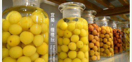 【宜蘭蜜餞】宜蘭橘之鄉蜜餞形象館~在蜜餞的甜蜜世界裡翻滾吧! @Via's旅行札記-旅遊美食部落格