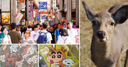 【奈良一日遊】近鐵奈良站攻略~拜大佛、餵小鹿、血拼伴手禮!一日遊&住宿怎麼安排就看這篇! @Via's旅行札記-旅遊美食部落格