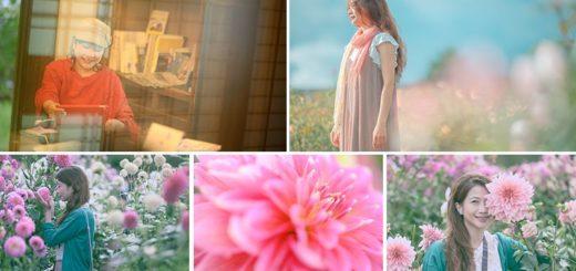 【廣島旅行】微風輕旅行X空氣感寫真,沉醉在「世羅高原」迷幻的空氣氛圍~透明小清新,療癒好舒心! @Via's旅行札記-旅遊美食部落格
