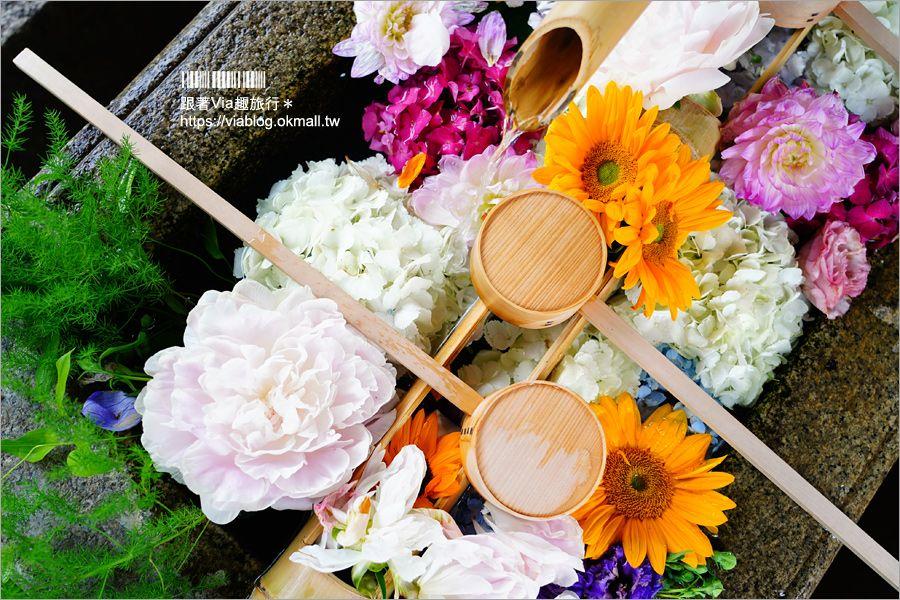 京都勝林寺》朝聖日本最夯的花幻花手水!秋季來還有「吉祥紅葉」美景的紅葉名勝! @Via's旅行札記-旅遊美食部落格
