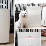 即時熱門文章:【韓國空氣清淨機】白色家電控看這裡~WINIX空氣清淨機 ZERO+&WINIX16L清淨除濕機~限時超值開團中!