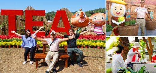 【南投茶博】2020南投世界茶業博覽會~精彩主題場館,跟著我一起玩透透(下集) @Via's旅行札記-旅遊美食部落格