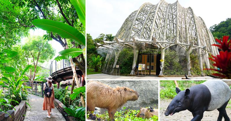 台北市立動物園》最新熱帶雨林館~根本侏儸紀公園場景!水豚、樹懶、馬來貘…療癒系動物一次看個夠! @Via's旅行札記-旅遊美食部落格